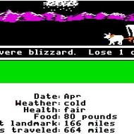 Oregon Trail Blizzard
