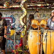 Soul Rhythms. Photo courtesy of the band. Credit: Aric Morgan.