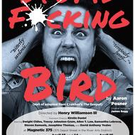 Stupid Fucking Bird poster