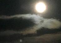 LEAF Moon